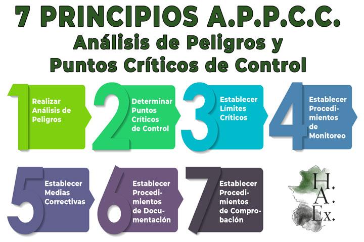 Higiene-Alimentaria-Extremenia-Extremadura-Sistemas-A.P.P.C.C-ok